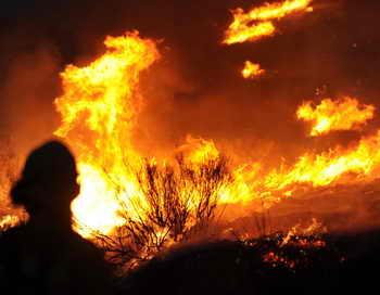 В столице Аргентины вспыхнул пожар в городском природном парке, огонь достигает высоты десять метров. Фото: ROBYN BECK/AFP/Getty Images