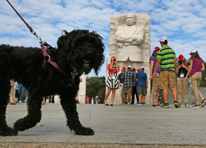 Мемориал Мартину Лютеру Кингу вновь открыт для посещения 17 октября 2013 года, на следующее утро после принятия законопроекта о возобновлении работы правительства США. Фото: Mark Wilson / Getty Images