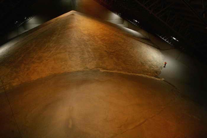 Китаю в связи с неурожаем пшеницы потребуется до 10 млн тонн зерна. Фото: Ian Waldie/Getty Images