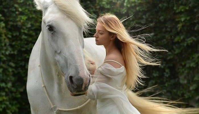 Лошадь — живое лекарство