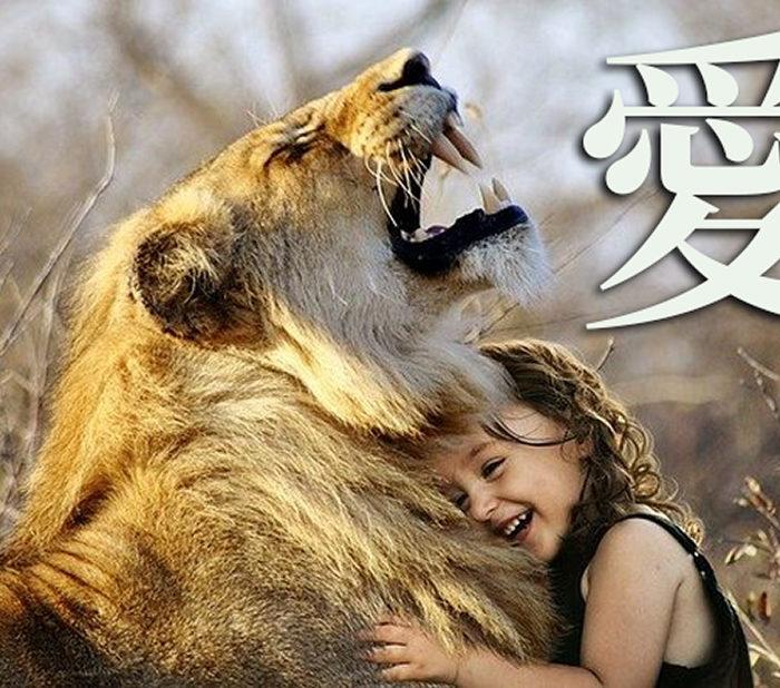 Китайские иероглифы: любовь