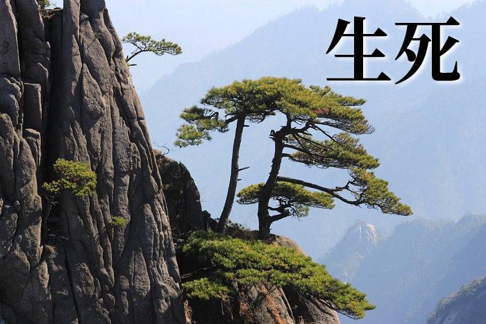 Китайские иероглифы: рождение и смерть