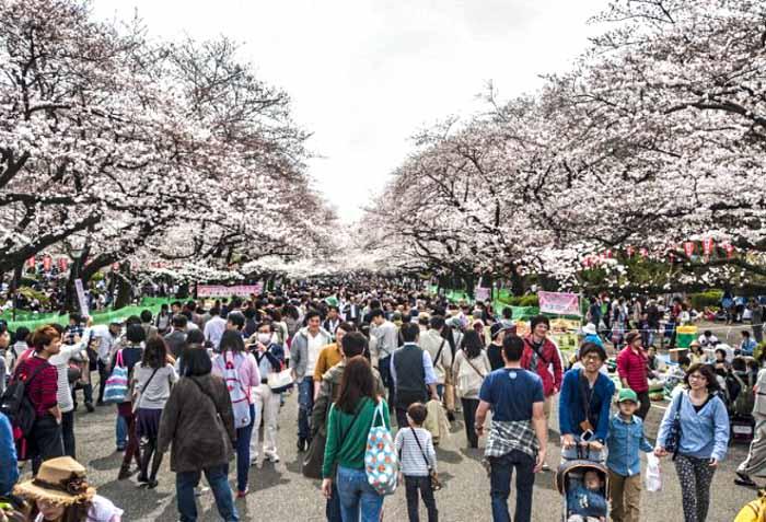 В Токио найден очаг активного радиационного излучения