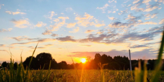 Свет утреннего солнца способствует стройности человека