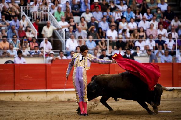 Коррида в Барселоне. Фото: David Ramos/Getty Images
