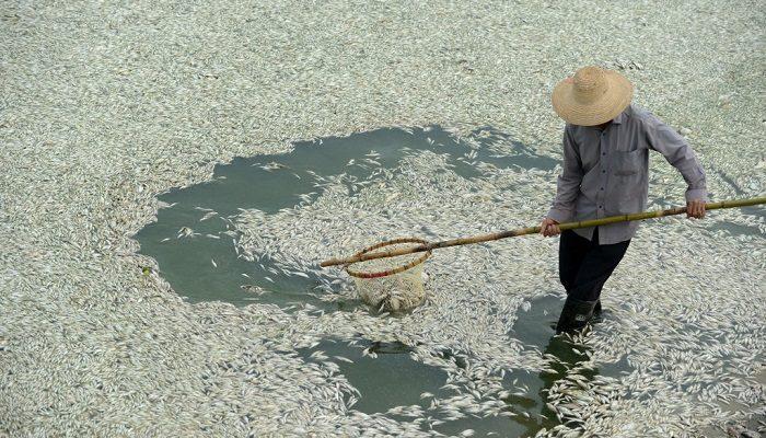 9 самых бесполезных госучреждений в Китае