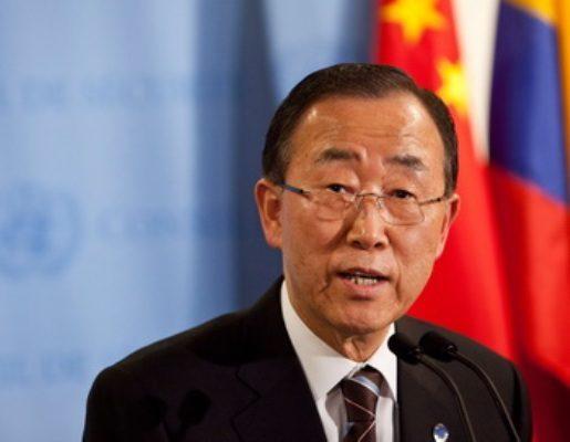 Генсек ООН получил в подарок шестимесячную львицу