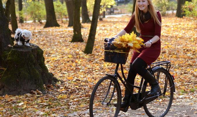 Внимание! На велосипеде дама!