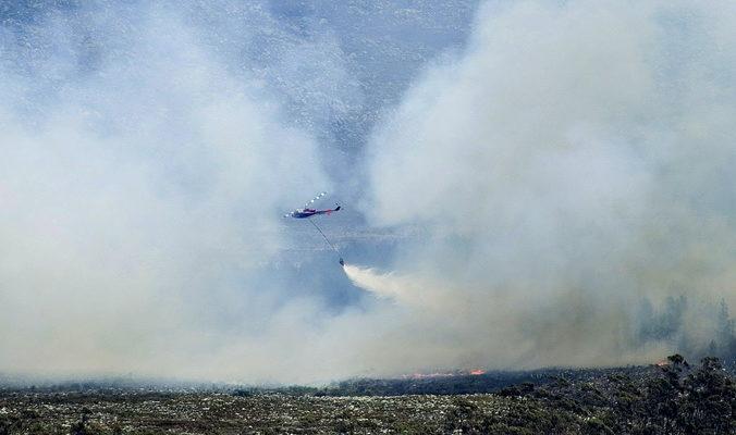 В ЮАР горят леса