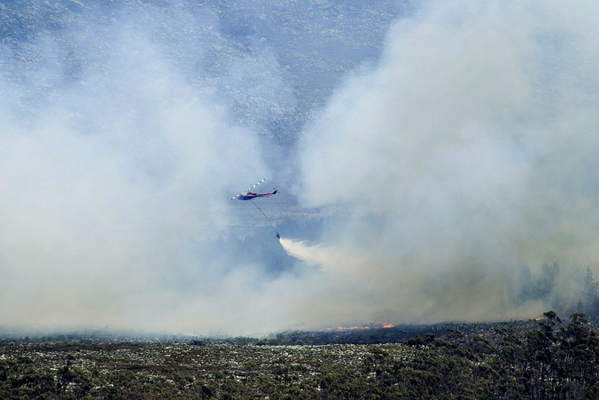 Африка, ЮАР, лесные пожары