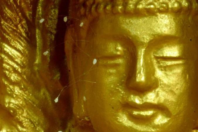 Цветок удумбары, распустившийся на статуе Будды. Фото: Epoch Times