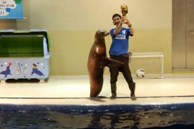 Перед чемпионатом мира морские котики в Токио сыграли в футбол