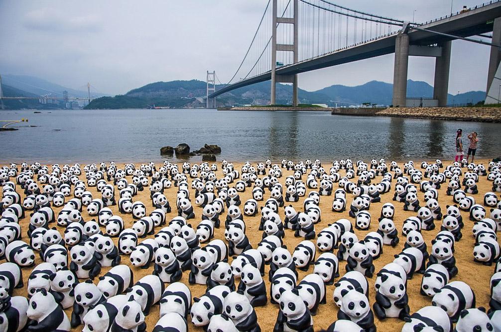 Сотни искусственных панд появились в аэропорту Гонконга