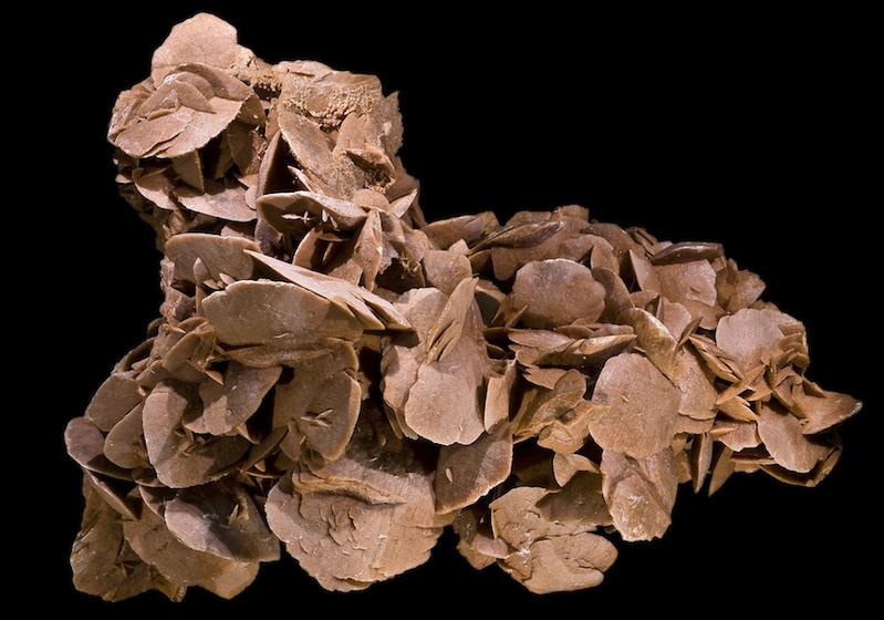 Розы из песка или шоколада? Фото: © Didier Descouens/Wikipedia Common