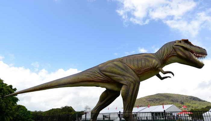 Туристы нашли на Ямале череп динозавра
