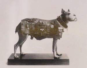Stubby-the-Military-Dog