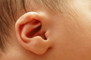 baby-ear-shutterstock_164804579-WEBONLY