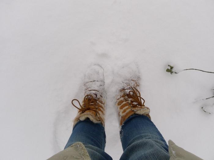 Зимняя обувь, которая никогда не выйдет из моды — угги!