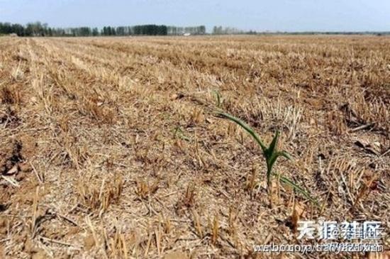 Засуха в Китае. Лето 2014 года. Фото с epochtimes.com