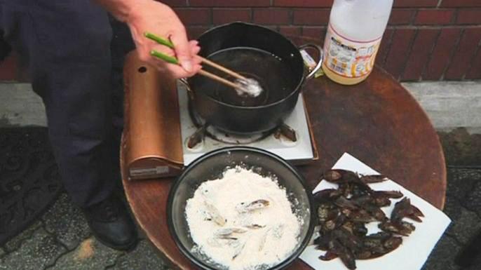 Японцы смакуют насекомых под разными соусами
