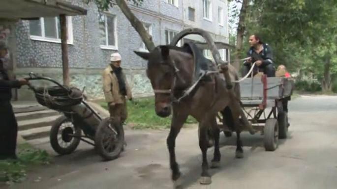 Слесари в уральском городе сменили УАЗик на запряженную лошадью повозку