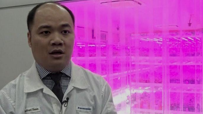 В Сингапуре создали ферму будущего