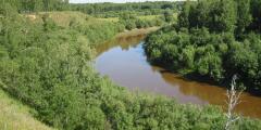 В Омской области обнаружено захоронение древнего воина