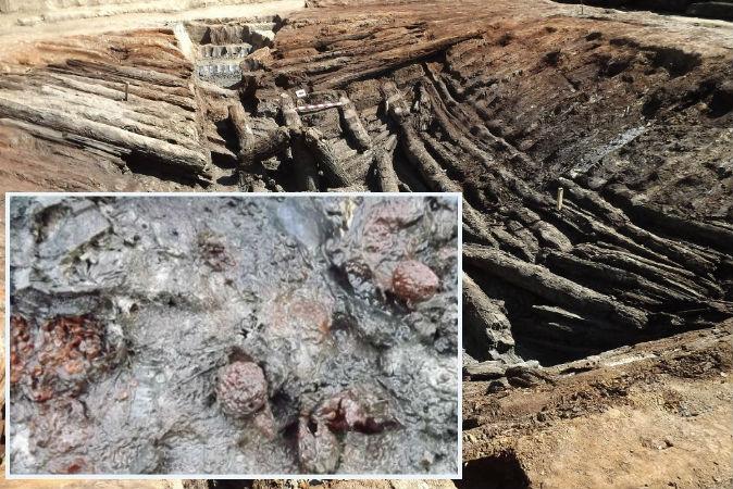 Древние дикие фрукты, найденные в погребальной камере в Грузии, были положены туда 4000-5000 лет назад, говорят археологи. Фото: Georgian National Museum