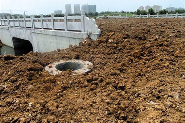 В Китае новые асфальтированные дороги засеяли соей