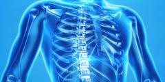 Восемь важных фактов об остеопорозе