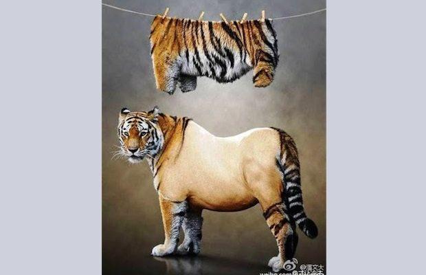 День рождения бывшего лидера Китая, или стриженый тигр