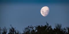 Таинственная фигура на Луне вызывает дискуссии