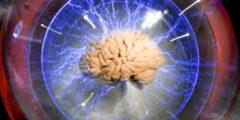 Учёные обнаружили гены, влияющие на рост человека