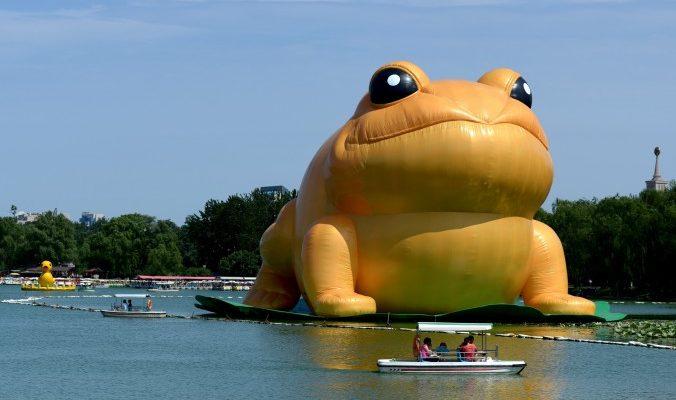 Выход фильма «Варёная золотая жаба» связан с опалой бывшего диктатора