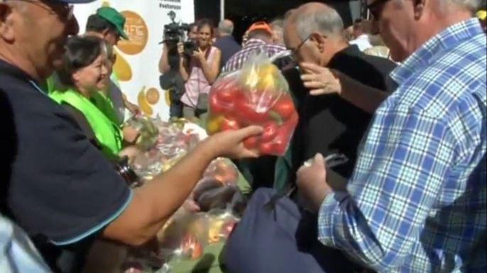 В Испании бесплатно раздали 10 тонн овощей и фруктов в знак протеста против российских санкций. Скриншот видео.