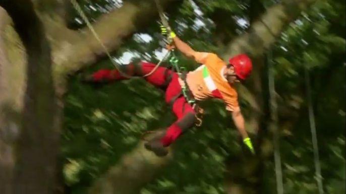 Британцы стали победителями соревнований по лазанию по деревьям. Скриншот видео.