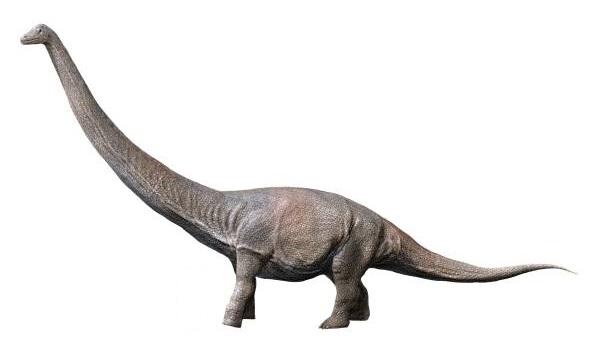 В Аргентине обнаружены останки динозавра невиданных размеров