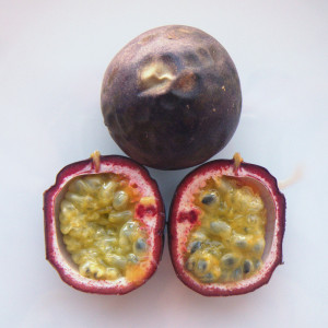 Purple_passionfruit