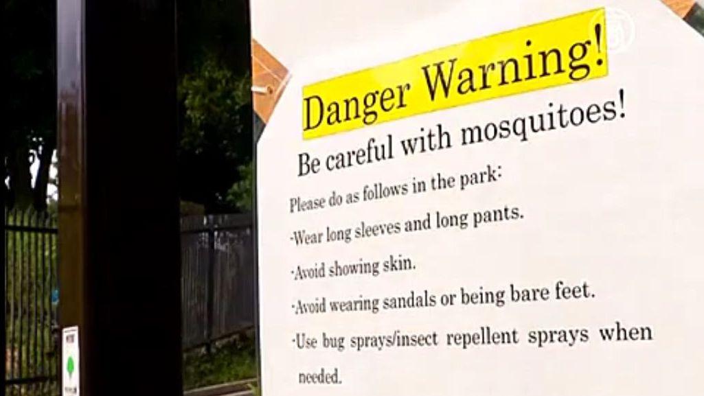 Из-за лихорадки тенге в Японии начинают закрывать парки. Скриншот видео.