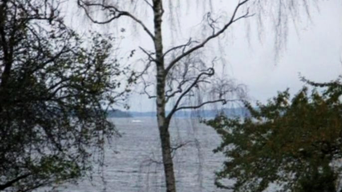 В распоряжении шведских военных оказался вот этот любительский фотоснимок. Скриншот видео.