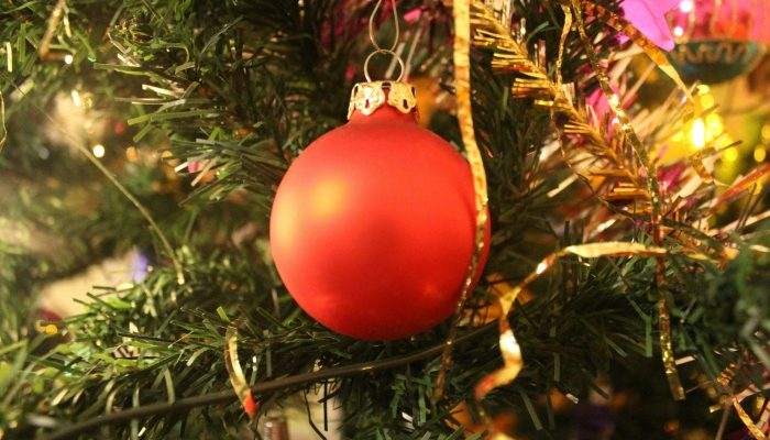 Главную новогоднюю ёлку страны привезут в Москву 20 декабря