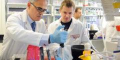 Учёные: рак лёгких может до 20 лет находиться в скрытой форме