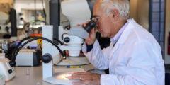 Учёные обнаружили молекулу, останавливающую развитие рака