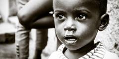 ВОЗ признаёт, что вирус Эбола потенциально способен распространяться по воздуху