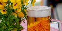Учёные рассказали, почему и людей, и мух тянет к пиву