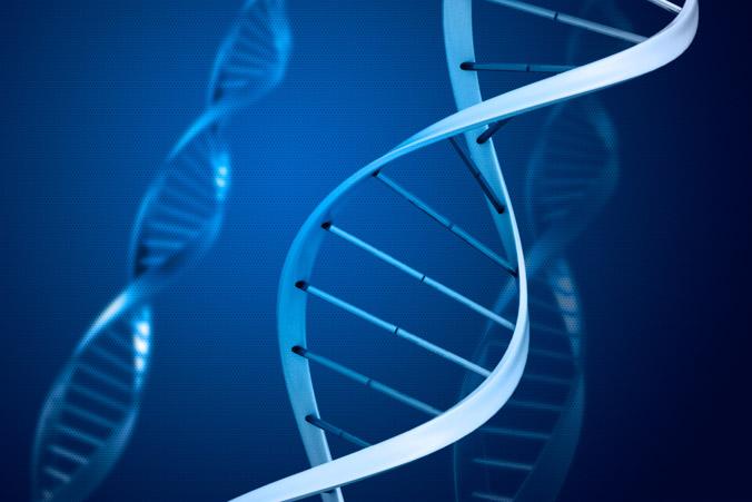 Способность есть и не толстеть — особенность строения генов человека. Фото: StariSob/rgbstock.com