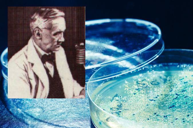 Флеминг, открывший пенициллин. Фото: Wikimedia Commons; Shutterstock*