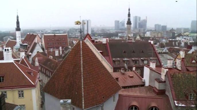 Электронный гражданин сможет из любой точки планеты открыть в Эстонии банковский счет или зарегистрировать фирму. Скриншот видео.