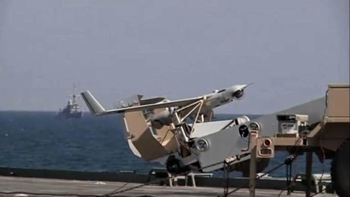 В учениях, которые продлятся две недели, принимают участие 6500 военнослужащих и шесть морских львов.  Скриншот видео.