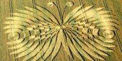 Попытки разгадать тайну кругов на полях